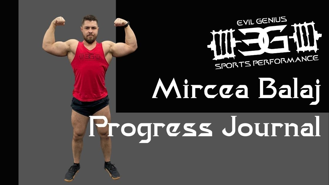 Mircea Balaj Progress Journal