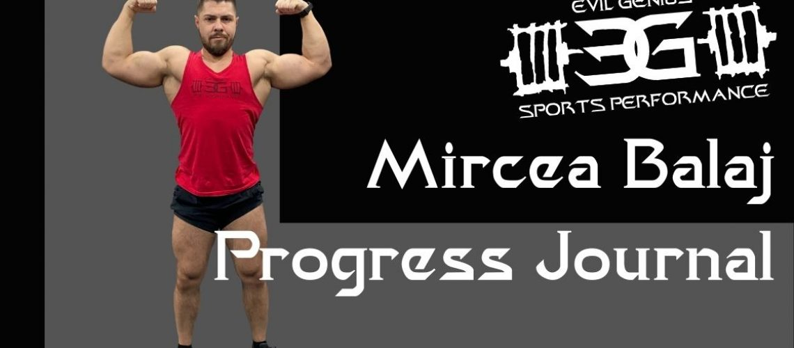 Mircea Balaj Progress Journal