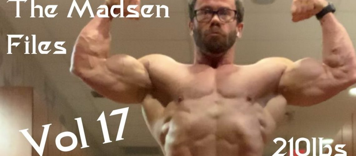 The Madsen Files 17